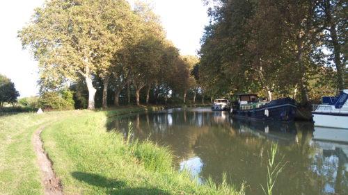 Galería de fotos Canal du Midi en Bici de Toulouse a Carcasona-3