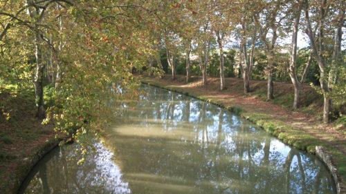 Galería de fotos Canal du Midi en Bici de Toulouse a Carcasona-6