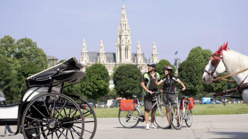 Gran Danubio en bicicleta y barco. Passau, Viena, Bratislava y Budapest-4