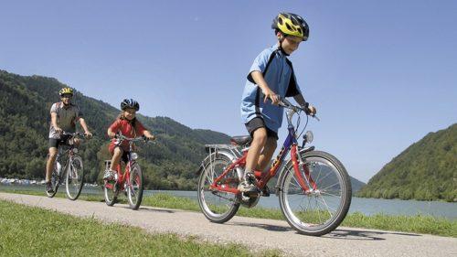 Galería de fotos Austria en bici con niños, de Linz a Viena-3