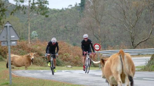 Mítica de La Vuelta: Lagos de Covadonga y La Cubilla-8